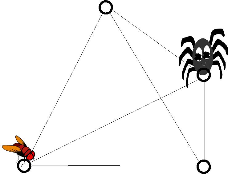 pajek in muha na cetvercu